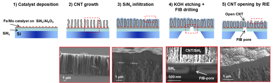Figure 1. micro-fabrication steps of the nanometer-scale fluidic devices. scanning electron microscopic images for steps 2–5 show cross sections of the device region enclosed by the dashed red square at that specific fabrication step. (1) deposition of an ~30-nm aluminum-oxide barrier layer and a catalyst layer of 5.5-å iron and 0.5-å molybdenum onto a silicon wafer. (2) top: growth of vertically aligned carbon nanotubes (cnts) by chemical vapor deposition. below: vertically aligned cnt array. (3) top: conf