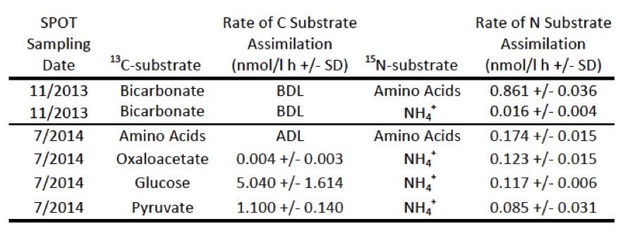 Table 1. Community-level metabolic rates in San Pedro Basin samples (experiments 2 and 5) measured by isotope-ratio mass spectrometry. BDL = below detection limit, ADL = above detection limit, SD = standard deviation of biological triplicates.