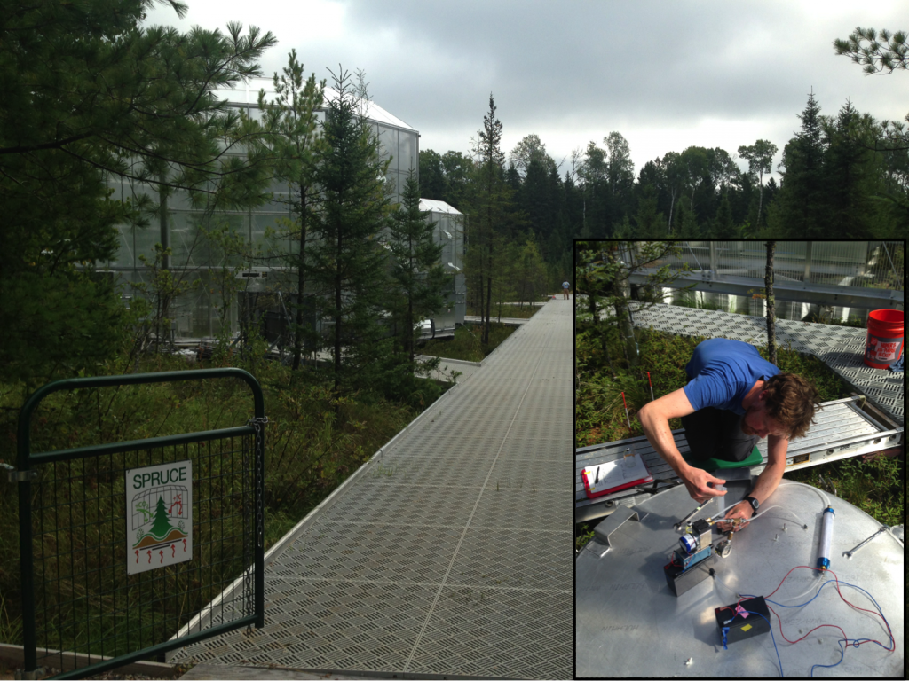 The spruce site, a spruce bog in northern minnesota where experimental chambers (left) are being used to simulate a warmer future climate. air emitted from the bog surface is collected for isotopic analysis of carbon dioxide and methane (inset). these measurements tell us that the carbon being emitted from the bog surface under our current climate was recently taken up from the atmosphere by vegetation and is cycling through the bog rapidly, not from decomposition of old peat that has been stored in the bog