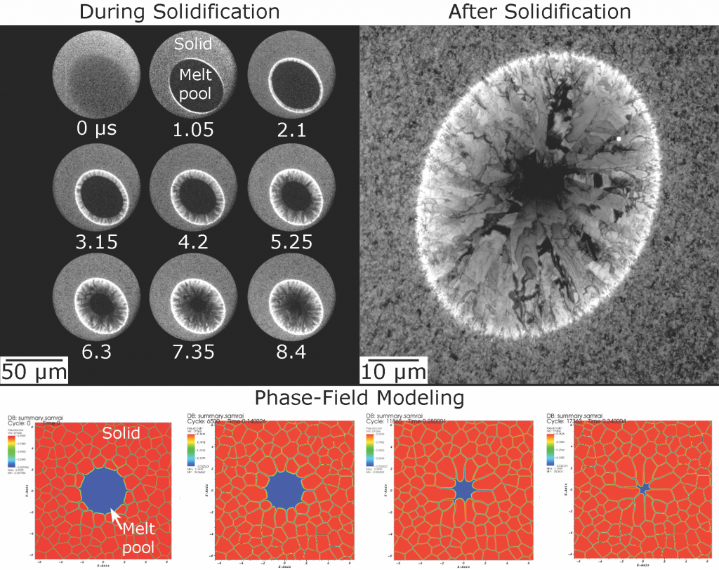 Time-resolved in situ images from dynamic transmission electron microscopy during rapid solidification in a metal thin film (upper left). this series spanned about 8.5 μs after pulsed-laser melting, capturing the microstructure evolution. a post-mortem ex situ image (upper right) shows the resultant columnar microstructure. evolution of the growth of these columnar grains is evident in the time-resolved in situ images, allowing measurements of the solidification front velocity. preliminary results from phas