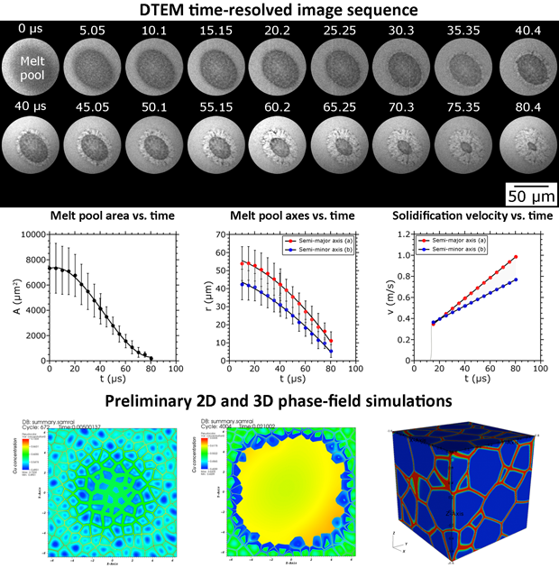 A time-resolved image sequence acquired with the dynamic transmission electron microscope (dtem) during rapid solidification of a copper–nickel alloy thin film is shown at top. from measurements of the evolution of melt pool area and size with time, the solidification velocity can be calculated and related to the observed microstructure evolution (middle). two-dimensional phase-field simulations of a copper–nickel melt pool showing initial melting using a heat source that mimics the pulsed-laser melting pro
