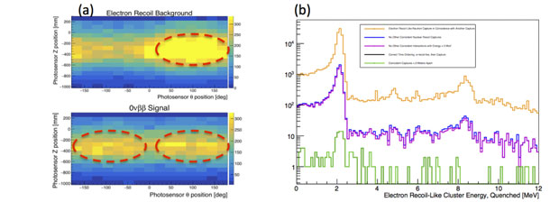 (a) simulated distribution of cherenkov light detected from background-like (top) and neutrinoless-double-beta-like events (bottom). each pixel represents a photosensor on the next enriched xenon observatory detector sidewall. each sample consists of 1,000 events. the directionality and amount of cherenkov light provides a potentially selective way to reject backgrounds. (b) a study of antineutrino-mimicking processes in the prospect (precision reactor oscillation and spectrum) experiment. cosmogenic neutro