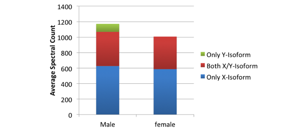 Figure 1. sex-specific peptides in both male and female teeth.