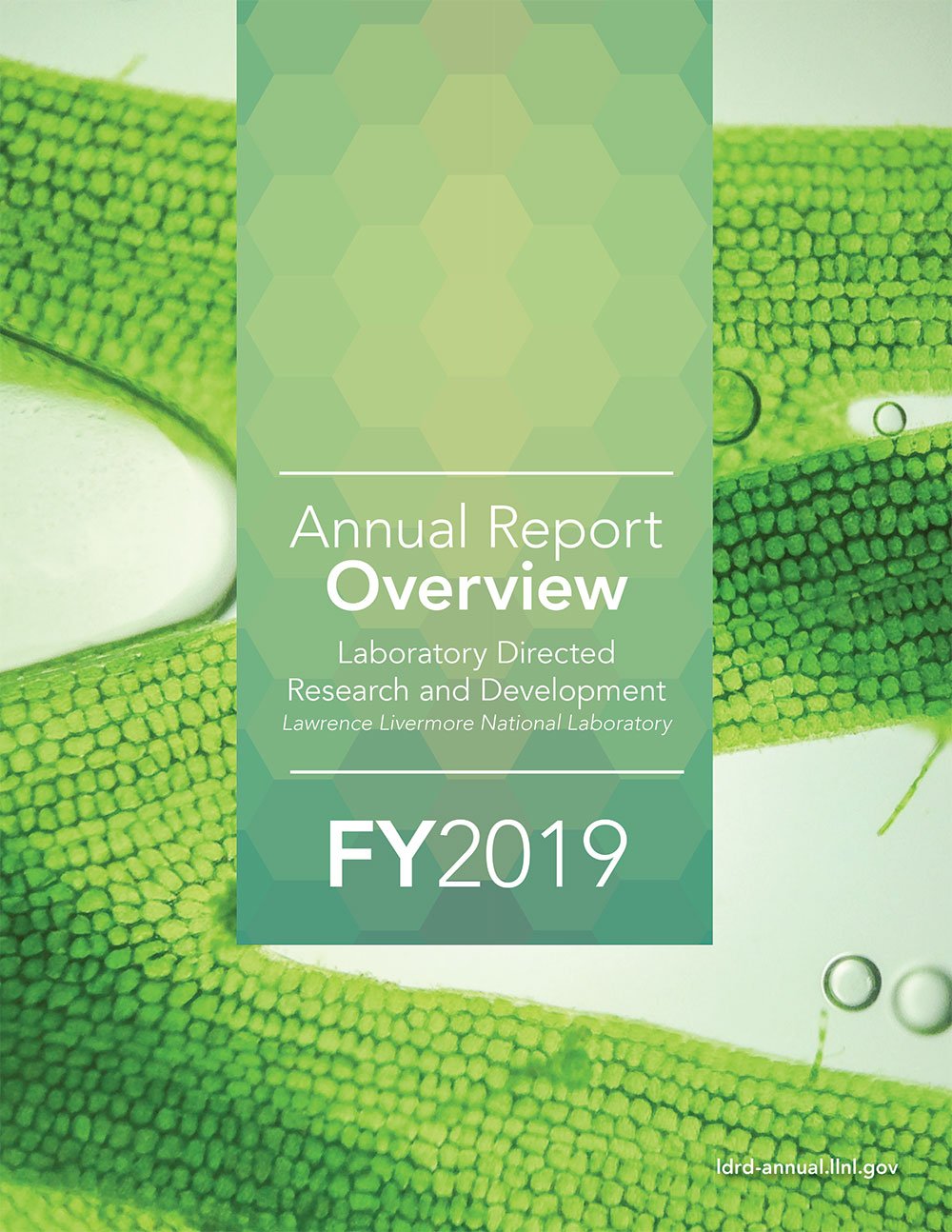 LDRD Annual Report Overview 2019, cover