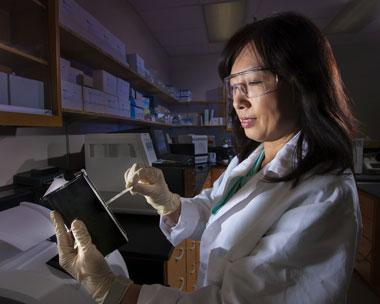 Figure 1. crystal jaing loads a lawrence livermore microbial detection array into a cassette for fluorescent scanning of microbial species detected on the chip.