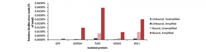 Figure 3. relative number of reads mapped to sindbis virus following phi29 whole genome amplification of samples.