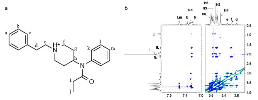 Figure 2. (a) structure of the protonated fentanyl with protons labelled alphabetically and (b) proton−proton roesy spectrum for 1:2 [b-cyclodextrin]:[fentanyl hydrogen-chloride], showing only the important chemical shift regions.