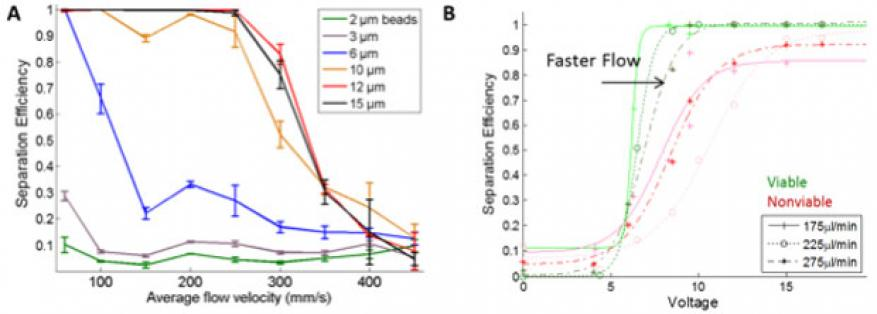 Figure 1. acoustic microfluidic device calibration. separation efficiency is measured as the fraction of particles recovered in the buffer solution compared to total particles exiting the stream. (a) separation curves for polystyrene beads at different flow velocities, corresponding to 200 to 1,600 µl/min. b) separation of hybridoma cells. green markers are for viable cells, and red markers are for nonviable cells. the experimental data are fit to sigmoid curves.