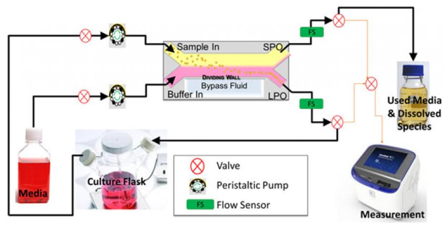 Figure 2. schematic of engineered cell–virus culture platform, and key instrumentation needed to achieve large-scale population monitoring and control. black arrows indicate direction of flow during normal operation. orange arrows indicate possible flow pathways during measurement collection. additional components not shown in the schematic include a syringe pump to clean lines and maintain sterility, a function generator to control the acoustic field, fraction collector, and camera.