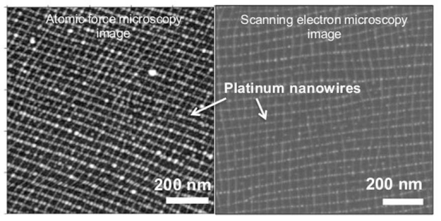 Metal meshes with nanometer-scale lattice spacings are promising for a number of electronic and optical applications, including transparent electrodes and metamaterials. however, fabricating such structures requires bridging length scales separated by six orders of magnitude—a formidable fabrication challenge. the top-down lithographic techniques typically required to achieve nanometer-scale resolution are not scalable to such large areas or to more complex three-dimensional geometries. we have demonstrated